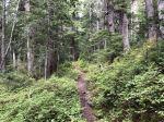 hike - mt-tamanos-041.jpg